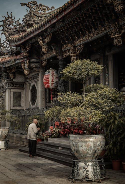 기도하다, 늙은 남성, 대만, 사원의 무료 스톡 사진