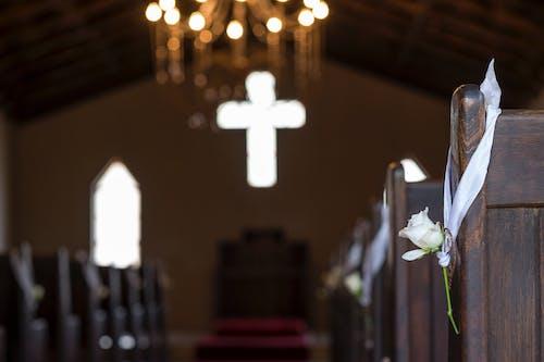 Free stock photo of bokeh, church, decor, flower