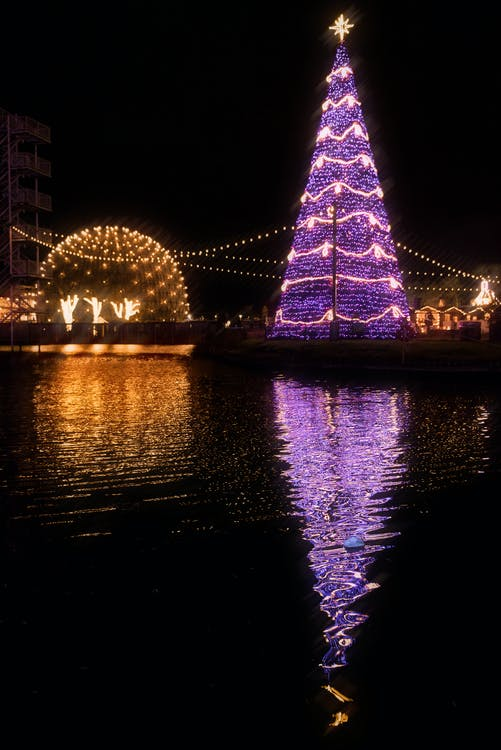 Lighted Christmas Tree Beside Body of Water