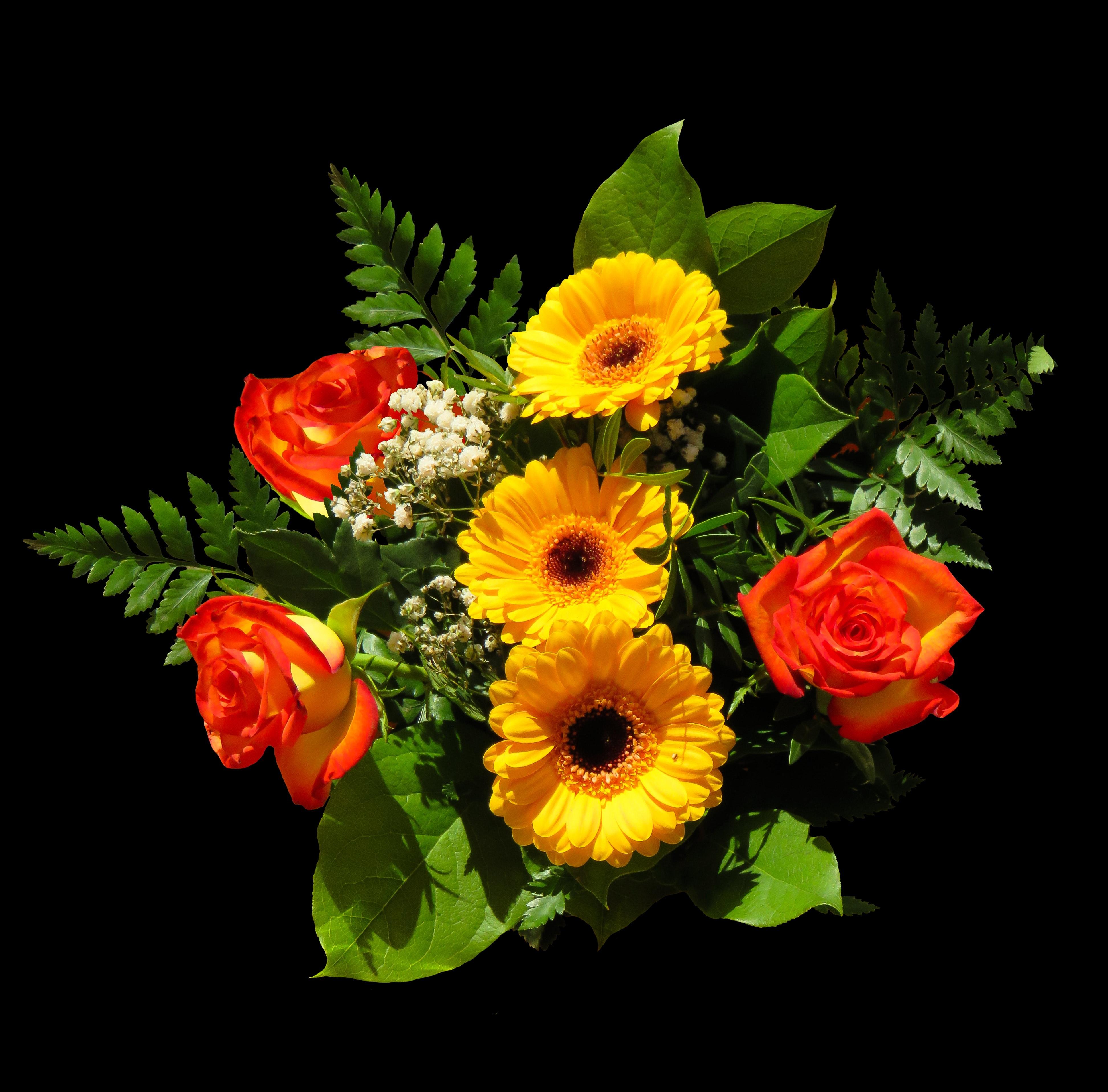 Free stock photo of birthday bouquet bouquet flowers free download izmirmasajfo