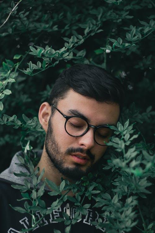 감은 눈, 나뭇잎, 남성, 남자의 무료 스톡 사진