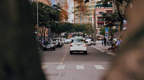 Základová fotografie zdarma na téma akce, auta, centrum města