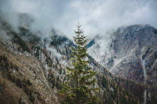 Гора, покрытая облаками