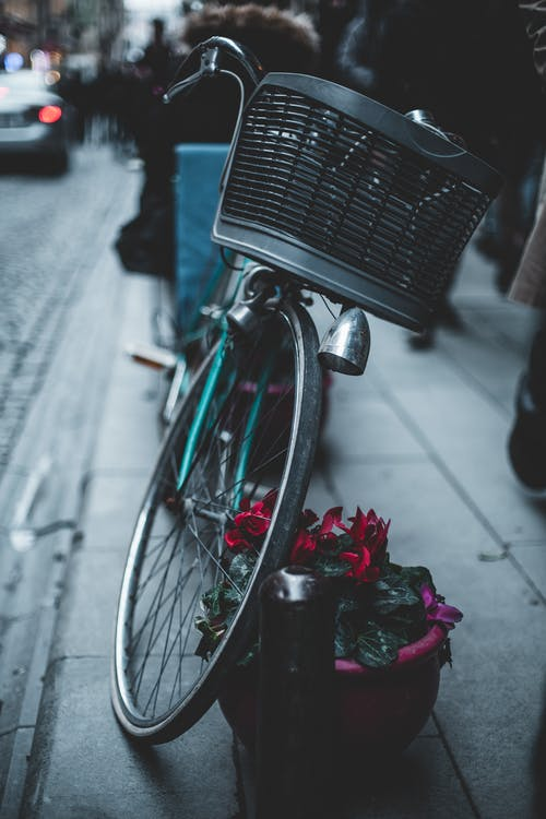 Parked Bike Beside Flowers in Pot
