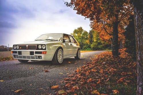 Gratis lagerfoto af asfalt, bil, dagslys, farve