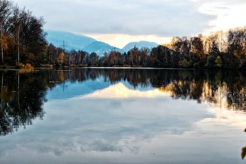 Ingyenes stockfotó az ősz színei, élet a természetben, erdő, felhőképződés témában