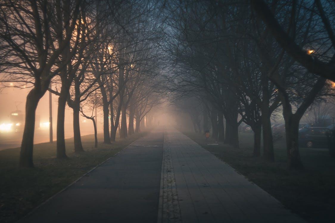 chodník, dlažba, krajina