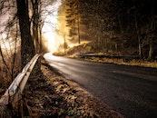 snow, light, road