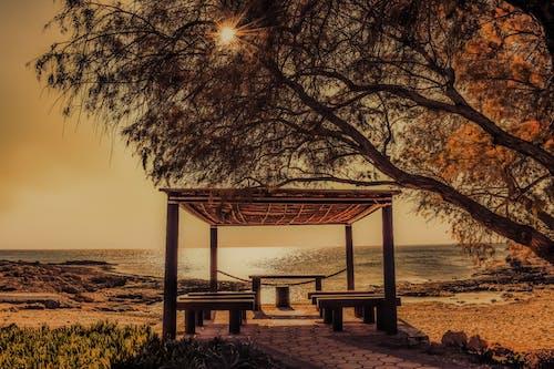 Immagine gratuita di acqua, alba, albero, capanna in spiaggia