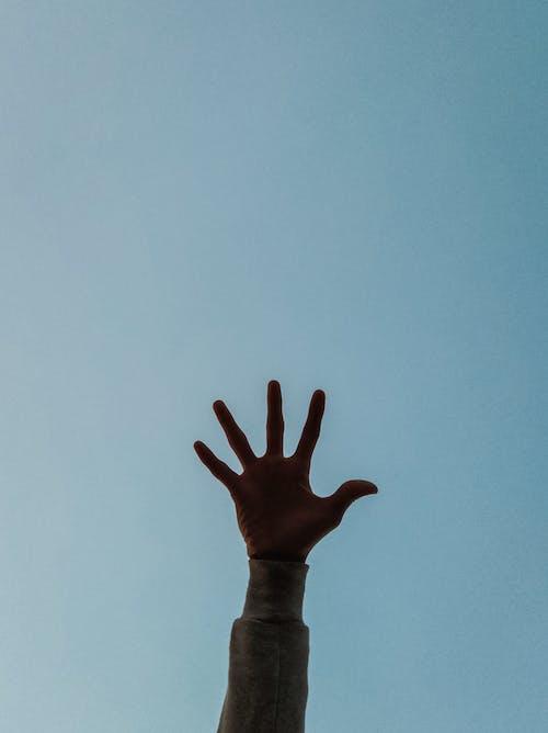 Základová fotografie zdarma na téma akce, cestování, denní světlo, dlaň