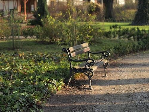 Бесплатное стоковое фото с Аллея, парк, Скамейка