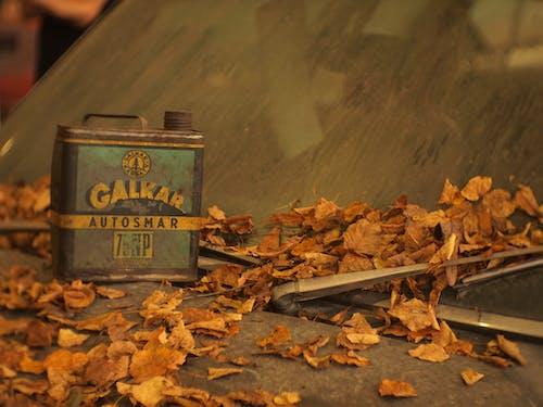 Бесплатное стоковое фото с greasecan, автомобиль, ветровое стекло, дворники