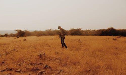 akşam Güneşi, ayakta adam, çim içeren Ücretsiz stok fotoğraf