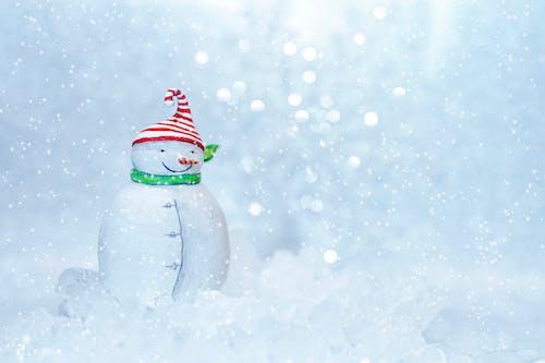 Photos gratuites de amusement, bonhomme de neige, brillant, célébration
