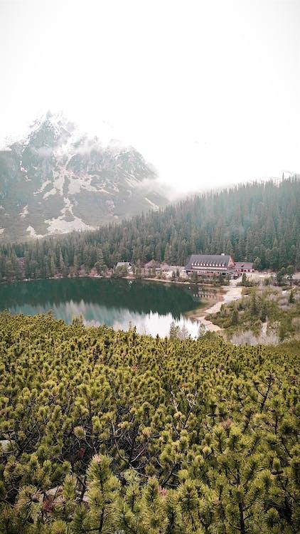 Alpit, idyllinen, järvi