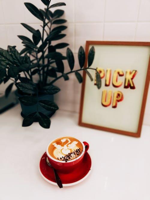 Fotos de stock gratuitas de adentro, aroma, Arte, arte latte