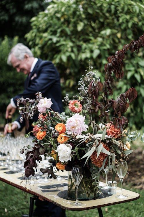 Foto stok gratis bejana, bunga-bunga, flora, kebun