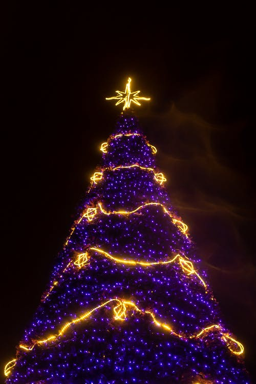 Purple and Yellow Lighted Christmas Tree