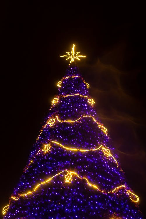 Purple and Yellow Lighted Christmas Tree