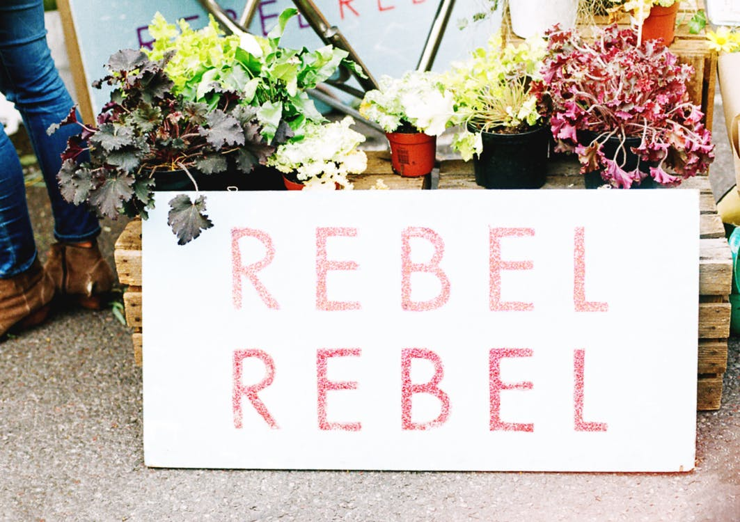 Red and White Rebel Board Decor
