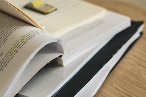 事實, 功課, 圖書, 堆 的 免费素材照片