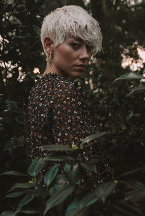 Gratis lagerfoto af ansigtsudtryk, blond hår, grønne blade, grønne planter