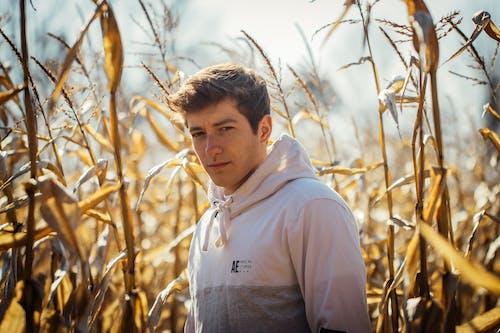 Δωρεάν στοκ φωτογραφιών με αγρόκτημα, ανάπτυξη, άνδρας, βοσκοτόπι