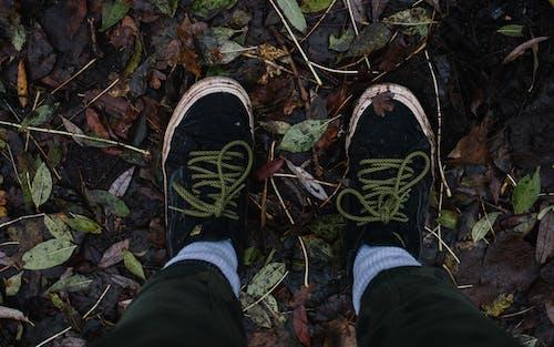 Crop traveler standing on fallen leaves on ground