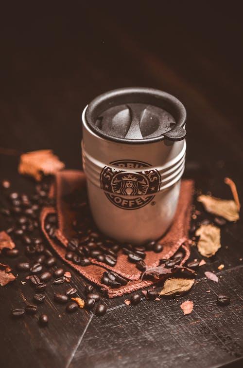 Gratis stockfoto met bladeren, cafeïne, close-up, drank