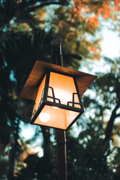 Gratis arkivbilde med arkitektur, daggry, falle, fokus