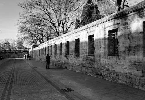 sã¼leymaniye, 人, 伊斯坦堡, 單色 的 免费素材照片