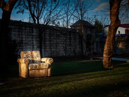 伊斯坦堡, 公園, 土耳其, 座位 的 免费素材照片