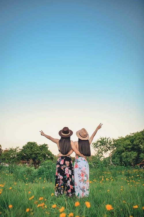 Kostenloses Stock Foto zu beziehung, blätter, blauer himmel, blumen