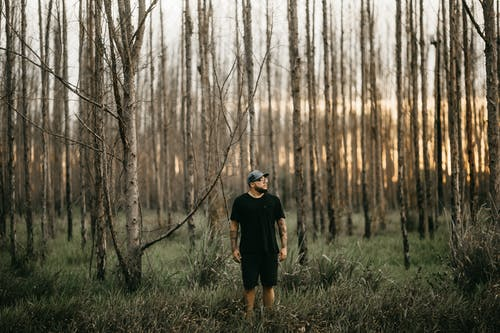 Man Standing on Trees