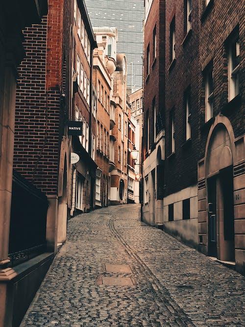 Free stock photo of architecture, autumn, bank, london