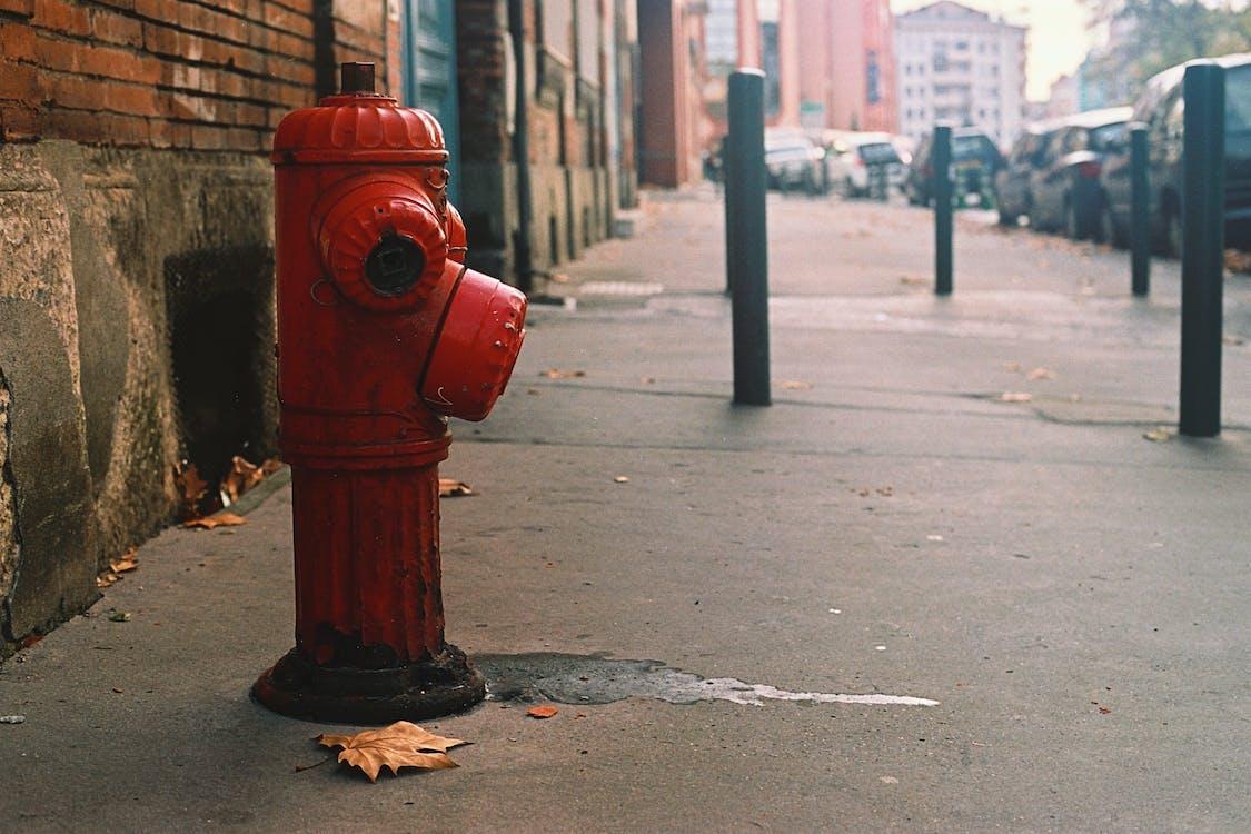 dlažba, město, požární hydrant