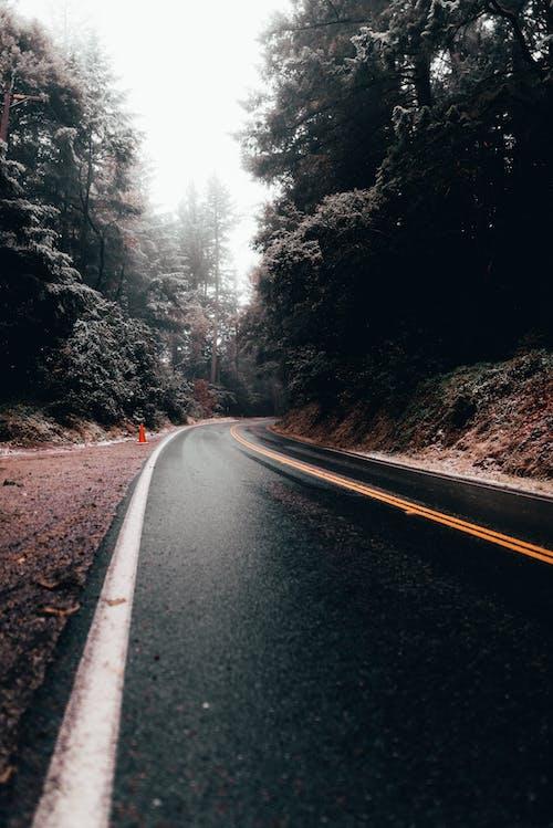 Free stock photo of empty road, road