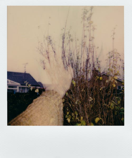 An Instant Photo Of A Landscape