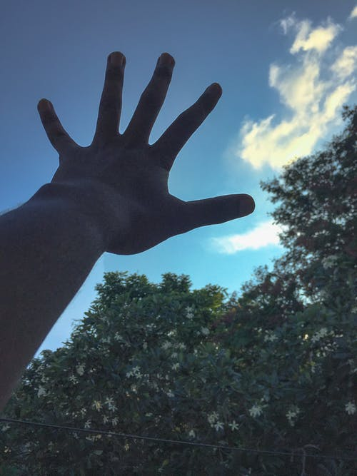 Free stock photo of black hands, hands, moody