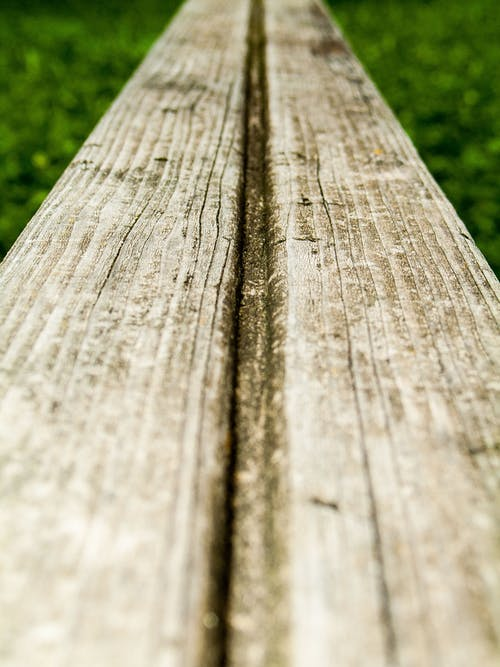 Free stock photo of green, structure, symmetry, wood