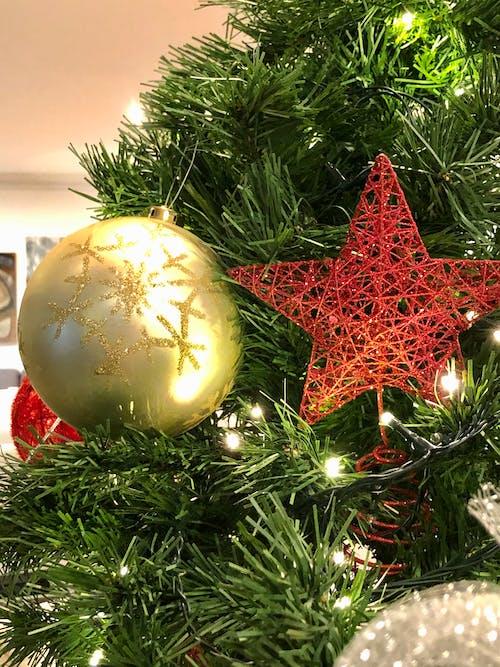 Foto profissional grátis de amor é amor, árvore de Natal, bolas de Natal, estrela de Natal