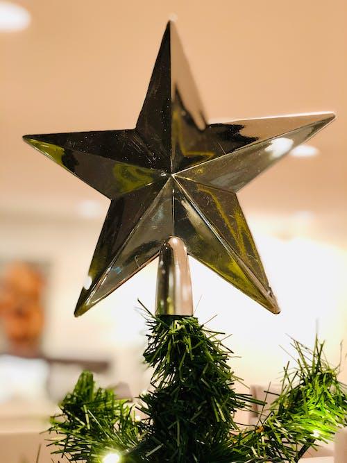 Foto profissional grátis de amor é amor, época natalícia, estrela de Natal, magia