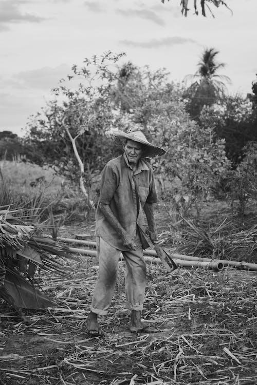 Δωρεάν στοκ φωτογραφιών με αγρόκτημα, αγρότης, άνδρας, άνθρωπος