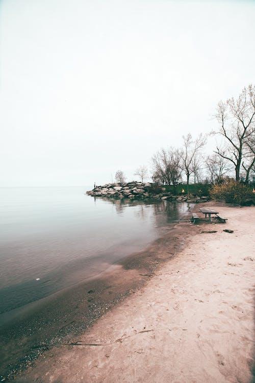 Photo of Beach Near Lake