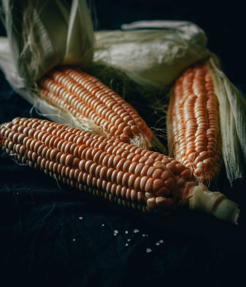 Corn on Black Textile Beside Green Plastic Pack