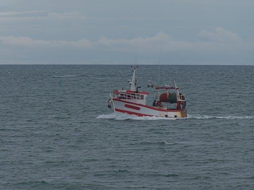 Gratis stockfoto met bateau, blikveld, chalutier, ciel