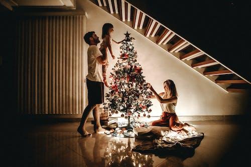 Fotos de stock gratuitas de adornos de navidad, adornos navideños, amor, árbol de Navidad