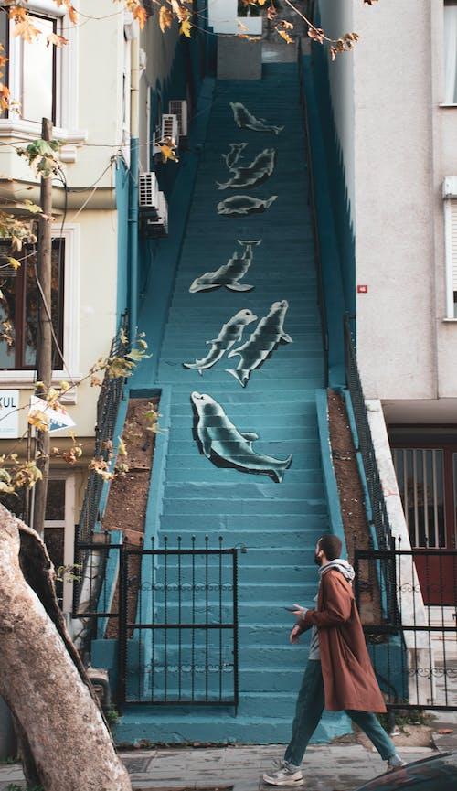 Ilmainen kuvapankkikuva tunnisteilla arkkitehtuuri, askel, asu, delfiinit