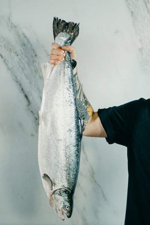 Person Holding Raw Fish