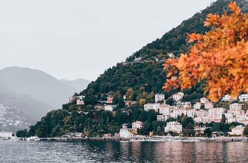 Photos gratuites de arbres, architecture, automne, baie